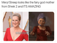 😂😂😂 oscars (credit @jarettsays): Meryl Streep looks like the fairy god mother  from Shrek 2 and ITS AMAZING  getty mages 😂😂😂 oscars (credit @jarettsays)