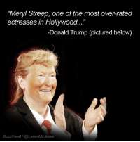 Meryl Streep: Meryl Streep, one of the most over-rated  actresses in Hollywood.  -Donald Trump (pictured below)  BuzzFeed (a Laren MMcJesse
