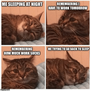 Meirl: MESLEEPING ATNIGHT  REMEMBERINGI  HAVE TO WORK TOMORROW  REMEMBERING  HOW MUCHWORK SUCKS  ME TRYING TO GO BACK TO SLEEP  tmgfip.com Meirl