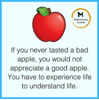 Adorable Quotes: Mesmerizing  Quotes  If you never tasted a bad  apple, you would not  appreciate a good apple.  You have to experience life  to understand life Adorable Quotes