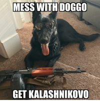 Credit to @wille_pete and her danger floof, Fen . . . military militaryhumor militarymemes army navy airforce coastguard usa patriot veteran marines usmc airborne meme follow followme troops ArmedForces militarylife popsmoke: MESS WITH DOGGO  GET KALASHNIKOVO Credit to @wille_pete and her danger floof, Fen . . . military militaryhumor militarymemes army navy airforce coastguard usa patriot veteran marines usmc airborne meme follow followme troops ArmedForces militarylife popsmoke