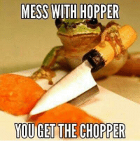 Dank Memes, You, and Mess: MESS WITH HOPPER  YOU GET THE CHOPPER I need more of these