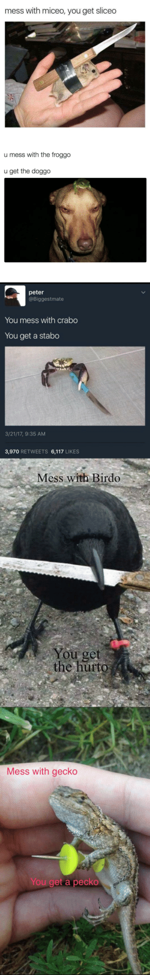 siiidon:  You forgot the best one yet : mess with miceo, you get sliceo   u mess with the froggo  u get the doggo   peter  @Biggestmate  You mess with crabo  You get a stabo  3/21/17, 9:35 AM  3,970 RETWEETS 6,117 LIKES   Mess with Birdo  You get  the hurto   Mess with gecko  You get a peck。 siiidon:  You forgot the best one yet
