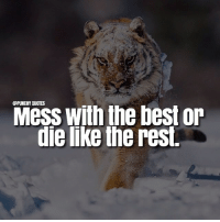 Mess with the best or  die like the rest Type 'Yes' if you are going to mess with the best.