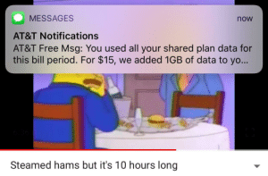 me irl: MESSAGES  AT&T Notifications  AT&T Free Msg: You used all your shared plan data for  this bill period. For $15, we added 1GB of data to yo...  now  Steamed hams but it's 10 hours long me irl