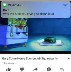 Anime, Crying, and Dad: MESSAGES  Dad  Why the fuck you crying so damn loud  now  Gary Come Home Spongebob Squarepants  1.8M views Top 10 saddest songs in anime
