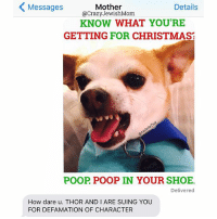 Christmas, Crazy, and Poop: Messages  Details  Mother  @Crazy JewishMom  KNOW WHAT YOU'RE  GETTING FOR CHRISTMAS  POOP POOP IN YOUR SHOE.  Delivered  How dare u. THOR AND I ARE SUING YOU  FOR DEFAMATION OF CHARACTER The truth hurts, @assholethor! CrazyJewishMom merrychristmas assholethor