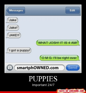 Puppieshttp://omg-humor.tumblr.com: Messages  Edit  Jake  Jake!  JAKE!  WHAT JOSH! IT IS 4 AM!  I got a puppy!  OMG. I'll be right over.  O smartphOWNED.com  Send  PUPPIES  Important 24/7  TASTE OF AWESOME.COM Puppieshttp://omg-humor.tumblr.com