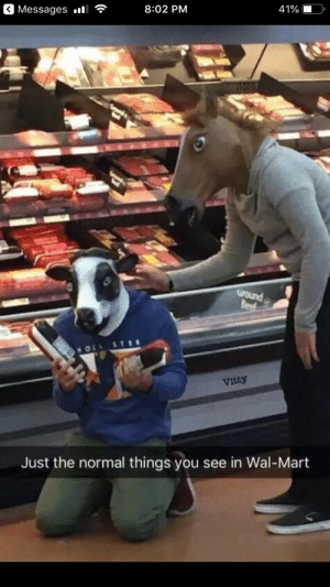 * sad cow noises *: Messages l  8:02 PM  41%  Ground  Beef  MOLL  Vitty  Just the normal things you see in Wal-Mart * sad cow noises *