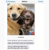Dating, New York, and Omg: Messages  Mother  TINDOG  Online dating isn't just for humans anymore.  OMG. IM PUTING THOR ON TINDOG!!!!!!!  This is a real thing in New York.  Can Thor stay with u for a while?  Details This can't be real. crazyjewishmom Dogfishing? @assholethor