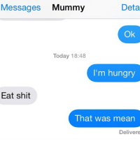 Means, Eat, and Enough: Messages  Mummy  Deta  Ok  Today 18:48  I'm hungry  Eat shit  That was mean  Delivere Mom has had enough of your shit and wants you to eat it