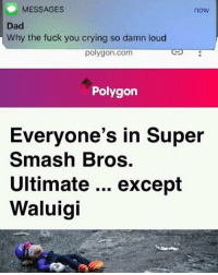 Crying, Dad, and Fuck You: MESSAGES  now  Dad  Why the fuck you crying so damn loud  polygon.com  Polygon  Everyone's in Super  Smash Bros.  Ultimate excepít  Waluigi Waaaaaaaa @gamersdoingstuff