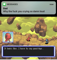 Crying, Dad, and Fuck You: MESSAGES  now  Dad  Why the fuck you crying so damn loud  It looks like...I have to say good-bye. Damn feels! https://t.co/0YuTFEGDhv