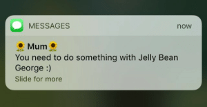yourgoat:  lukewarmskywalker:  yourgoat:   louise why do you have this  : MESSAGES  now  Mum.  You need to do something with Jelly Bean  George :)  Slide for more yourgoat:  lukewarmskywalker:  yourgoat:   louise why do you have this
