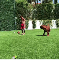 Football, Memes, and Messi: Messi playing football with Sergio Ramos  https://t.co/kBodxSS8kX