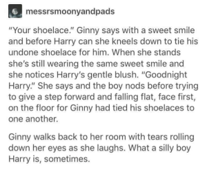 "Book Ginny: messrsmoonyandpads  ""Your shoelace."" Ginny says with a sweet smile  and before Harry can she kneels down to tie his  undone shoelace for him. When she stands  she's still wearing the same sweet smile and  she notices Harry's gentle blush. ""Goodnight  Harry."" She says and the boy nods before trying  to give a step forward and falling flat, face first,  on the floor for Ginny had tied his shoelaces to  one another.  Ginny walks back to her room with tears rolling  down her eyes as she laughs. What a silly boy  Harry is, sometimes. Book Ginny"