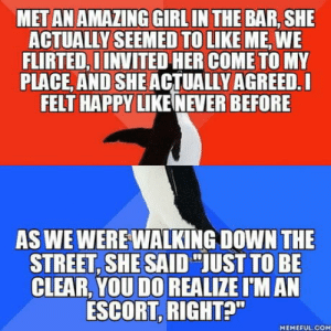 "Beautiful, Omg, and Tumblr: MET AN AMAZING GIRL IN THE BAR, SHE  ACTUALLY SEEMED TO LIKE ME, WE  FLIRTED, D INVITED HER COME TO MY  PLACE, AND SHE ACTUALLY AGREED.L  FELT HAPPY LIKE NEVER BEFORE  AS WE WEREWALKİNG DOWN THE  STREET, SHE SAID ""JUST TO BE  CLEAR, YOU DO REALIZE I'M AN  ESCORT, RIGHT?""  MEMEFUL COM omg-humor:  I can't begin to describe the feels… I should have known, I mean, am I really naive enough to think that a girl as beautiful as she would like an ugly face like myself?.."