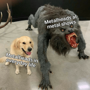 Nice people really via /r/memes https://ift.tt/2OfxOtV: Metalheads at  metal shows  Metalheads in  everyday life Nice people really via /r/memes https://ift.tt/2OfxOtV