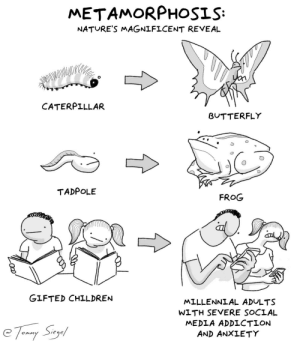 metamorphosis: a helpful guide [OC]: metamorphosis: a helpful guide [OC]