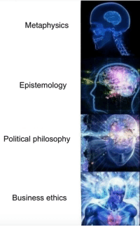metaphysical: Metaphysics  Epistemology  Political philosophy  Business ethics