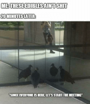 "I hereby call the meeting of the 420 club to order by a116jxb MORE MEMES: METHESE EDIBLESAINT SHIT  20 MINUTES LATER:  ""SINCE EVERYONE IS HERE, LETS START THE MEETING"" I hereby call the meeting of the 420 club to order by a116jxb MORE MEMES"