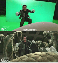 Memes, Movies, and Movie: METHOD  Real  G@MOVIES.EFFECTS  METHOD  Moute Rate This Movie Out Of 10. Must follow 👉@Movies.Effects for more updates. Night at the museum. Secret of the tomb.After-Before Effects. behindthescenes vfx vfxworld
