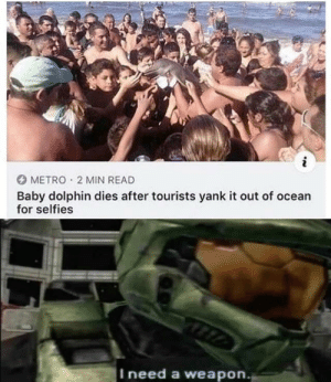 Dank, Memes, and Target: METRO 2 MIN READ  Baby dolphin dies after tourists yank it out of ocean  for selfies  Ineed a weapon. I need more than a weapon by danielthygreat MORE MEMES