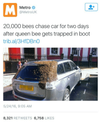"""Friends, Target, and Tumblr: Metro  @MetroUK  20,000 bees chase car for two days  after queen bee gets trapped in boot  trib.al/3HfDBnO  5/24/16, 9:05 AM  8,321 RETWEETS 6,758 LIKES <p><a class=""""tumblr_blog"""" href=""""http://notchicken.tumblr.com/post/144885888771"""" target=""""_blank"""">notchicken</a>:</p> <blockquote> <p>When will your friends ever</p> </blockquote>"""