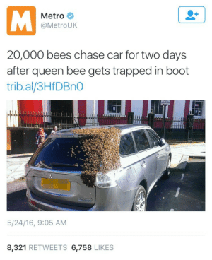 pureslime: notchicken:  When will your friends ever   PLEASE GIVE US BACK OUR MOM : Metro  @MetroUK  20,000 bees chase car for two days  after queen bee gets trapped in boot  trib.al/3HfDBnO  5/24/16, 9:05 AM  8,321 RETWEETS 6,758 LIKES pureslime: notchicken:  When will your friends ever   PLEASE GIVE US BACK OUR MOM