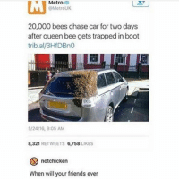 beyonce: Metro  v Metro  @Metro UK  20,000 bees chase car for two days  after queen bee gets trapped in boot  trib.al/3HfDBno  5/24/16, 9:05 AM  8,321  RETWEETS  6,758  LIKES  notchicken  When will your friends ever beyonce