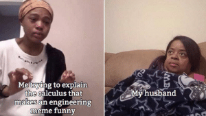 The real struggle: Metrying to explain  the calculus that  makes an engineering  meme funny  My husband  MB The real struggle