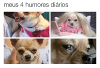 Memes, 🤖, and Lily: meus 4 humores diarios  LILY LU