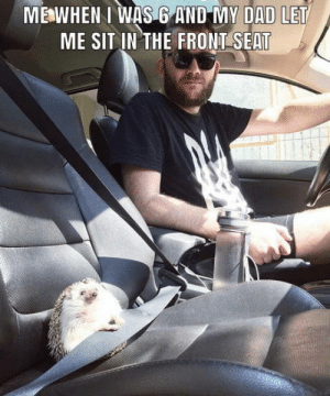 This is true: MEWHEN I WAS 6 AND MY DAD LET  ME SIT IN THE FRONT SEAT This is true