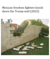 Memes, 🤖, and Freedom Fighter: Mexican freedom fighters knock  down the Trump wall (2022) #EstamosConMexico
