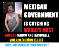 Por siempre en nuestros corazones: MEXICAN  GOVERNMENT  IS CATCHING  WORLD'S MOST  FAMOUS  NARCO AND BASICALLY  you are fucking stupid  How Just Watch The Free Wideo Here Por siempre en nuestros corazones