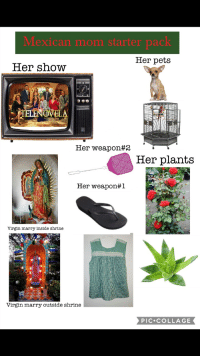 Starter Pack: Mexican mom starter pack  Her pets  Her show  VELA  Her weapon#2  Her plants  Her weapon#1  Virgin marry inside shrine  Virgin marry outside shrine  PIC COLLAGE