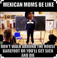 So relatable: MEXICAN MOMS BE LIKE  LION  PRID  DON'T WALK AROUND THE HOUSE  BAREFOOT OR YOU'LL GET SIcK  AND DIE So relatable
