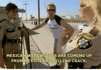 Donald Trump on his campaign tour (2015): MEXICAN WEREWOLVES ARE COMING UP  FRO  XICO AND SELLING CRACK. Donald Trump on his campaign tour (2015)