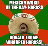 donald: MEXICAN WORD  OF THE DAY: HARASS  DONALD TRUMP  WHOOPED HARASS!  Kappit.com