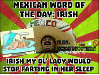 Mexican Word of the Day: Irish 💩💨😂: MEXICAN WORD OF  THE DAY: IRISH  FB.COM/  MEXICANWORDOETHEDAY  ME  IRISH MY OL LADY WOULD  STOP FARTING IN HER SLEEP Mexican Word of the Day: Irish 💩💨😂