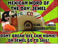 Jail, Break, and Word: MEXICAN WORD OF  THE DAY:  JEWEL  MEXICAN WORDORTHEDAY  Pet5mart quKk?  Mind  BREAK DEE  LAW HDMIEE  OR EWEL GO TO JAIL! Mexican Word of the Day: Jewel 💍😂