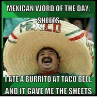 Mexican Word of the Day: MEXICAN WORD OF THE DAY:  SHEETS  TATE A BURRITO AT TACO BELL  AND IT GAVE ME THE SHEETS