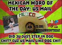 Dogs, fb.com, and Mail: MEXICAN WORD OF  THE DAY US MAIL  FB.COM/  MEXICAN WORDOF THE DAY  DID JU JUST STEP IN DOG  CHIT CUZ US  MAIL LIKE DDG CHIT