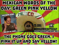 Mexican: MEXICAN WORDS OF THE  DAY: GREEN PINK YELLOW  HOLD ON ONE SECOND  FB.COM/  MEXICAN WORIOFTHEDAY  THIS ISNT MY PHONE!  MEKWOORDOETHEDAT NET  THE PHONE COES GREEN,  PINK IT UP AND SAY VELLDW!
