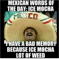 ~Blane~: MEXICAN WORDS OF  THE DAY: ICE MOCHA  HAVE A BAD MEMORY  BECAUSE ICE MOCHA  LOT OF WEED ~Blane~