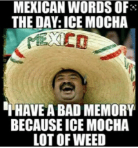 Mexican Word of the Day: MEXICAN WORDS OF  THE DAY: ICE MOCHA  THAVEA BAD MEMORY  BECAUSE ICE MOCHA  LOT OF WEED