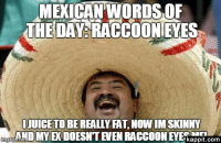 Mexican Meme: MEXICAN WORDS,OF  THE DAY RACCOON EVES  IJUICE TO BEREALLY FAT,NOWIMISKINNY  AND MY EK DOESNTENEN RACCOON EYES  kappit.com