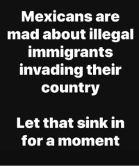 ~ Ginger  Rowdy Conservatives: Mexicans are  mad about illegal  immigrants  invading their  country  Let that sink in  for a moment ~ Ginger  Rowdy Conservatives