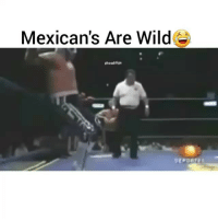 Funny, Lit, and Wild: Mexican's Are Wild  Ahoodclips  DEPORTI s Hahhaha they are lit 😀😂
