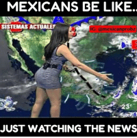 Mayte Carranco 😍😍 via @mexicanprobz_: MEXICANS BE LIKE.  SISTEMAS ACTUALET  IG: @mexican probz  JUST WATCHING THE NEWS Mayte Carranco 😍😍 via @mexicanprobz_
